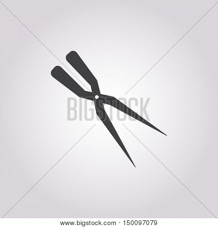 secateurs icon on white background for web