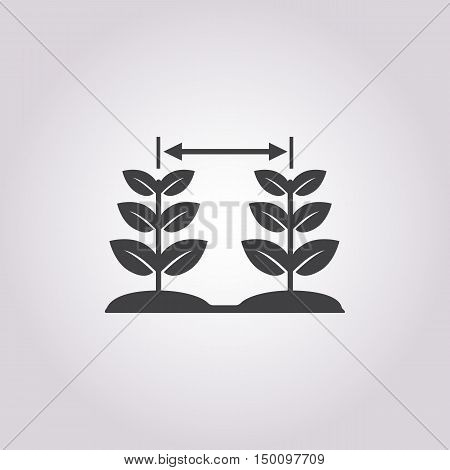 plant icon on white background for web