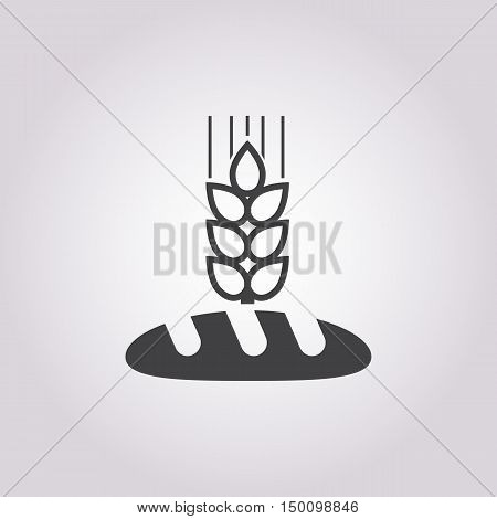 bread icon on white background for web