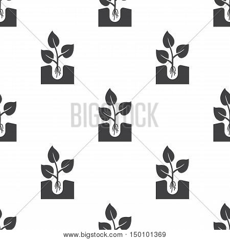 sapling icon on white background for web