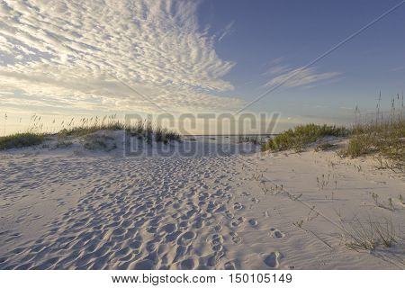 Millions of footprints in the sand dunes in the early morning point the way to the Gulf of Mexico.