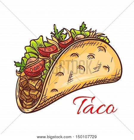Mexican beef taco with fresh vegetables sketch of crispy corn tortilla filled with meat, tomato, pepper and salad greens. Mexican cuisine restaurant, fast food menu design
