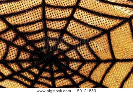 Close Up Of Spiderweb And Thread Texture For Halloween Themed Background