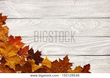 Textured vintage rustic wooden background with autumn yellow leaves