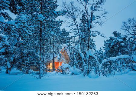 Winter fairy night - wooden cottage with warm light in blue snowy forest, silent winter weather. Seasonal landscape