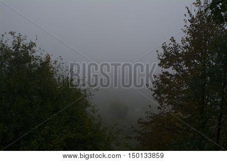 Morning Misty, The River Oka