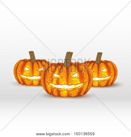 Vector pumpkins on white background. Hand drawn halloween sketch. Drawing orange pumpkins. Doodle line graphic design. Halloween illustration.