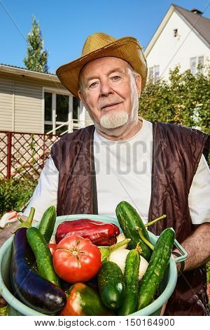 Smiling senior man with his harvest in the garden. Gardening and vegetable farming. Happy retirement.
