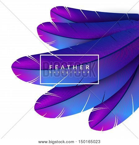 Colorful feather background. Abstract dynamic composition. Eps10 vector feather illustration.
