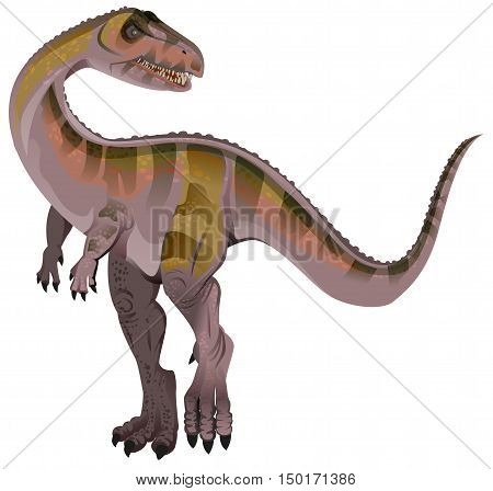 Carnivorous dinosaur Allosaurus. Isolated on white vector illustration