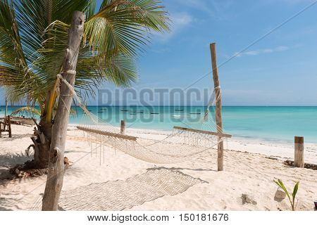 white handmade hammock with palm tree on clean Zanzibar beach and clear ocean on the background