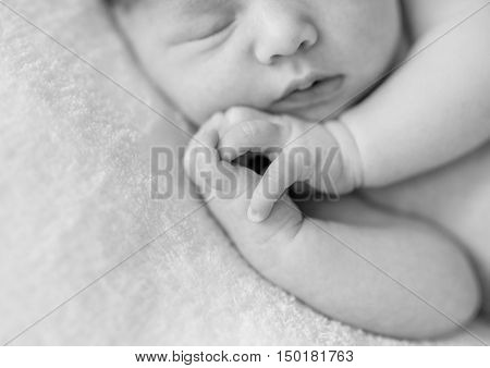 lovely sleepy face and hands with crossed fingers of a newborn baby, black and white photo, close up