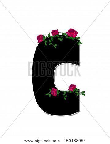 Alphabet Rose Trellis C