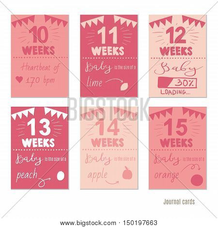 pregnancy weeks Vector design templates for journal cards, Pregnancy stages, trimesters and birth, pregnant woman and baby. Infographic elements poster