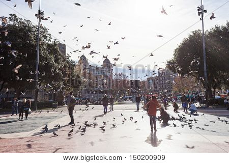 Barcelona Spain - January 11 2016: People feeding pigeons in Catalonia Square (Plaza de Cataluna). It is a large square in central Barcelona.