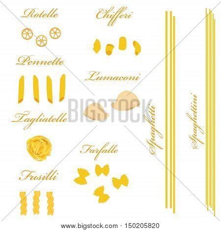 Macaroni set vector pasta collection macaroni icon pasta types names