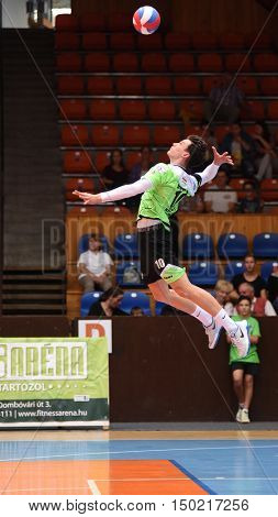 KAPOSVAR, HUNGARY - SEPTEMBER 30: Cameron Keen (in green) in action at a Hungarian National Championship volleyball game Kaposvar (green) vs. PEAC (white), September 30, 2016 in Kaposvar, Hungary.