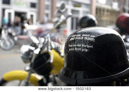 Pig Helmet