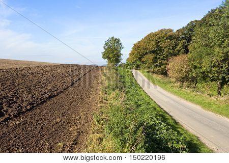 Country Road Beside A Plowed Field