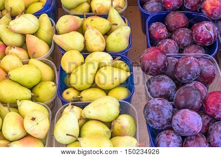 Plums and pears for sale at a market in Palermo
