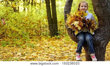 girl sitting on a tree and holding autumn leaves