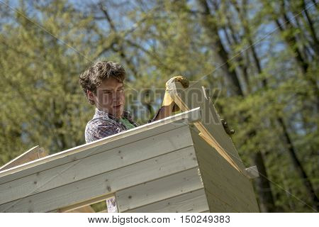 Young man building a wooden garden hut standing inside fitting a plank of wood into position viewed from below.