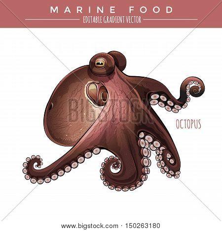 Octopus illustration. Marine food, editable gradient vector
