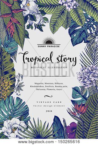 Vector vintage card. Botanical illustration. Tropical flowers and leaves.