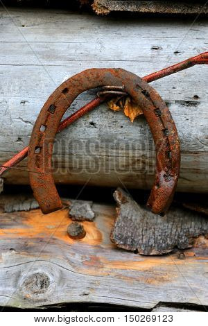 old rusty horseshoe on woods background