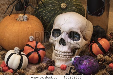 Halloween skull with orange white and golden pumpkins plus other holiday decor