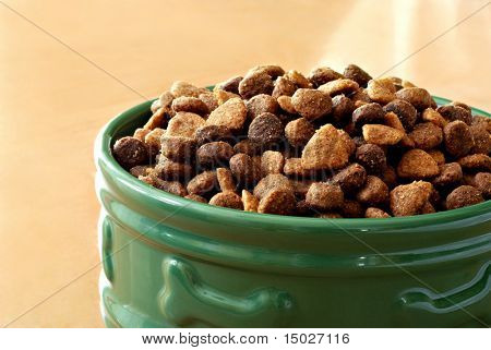 Sunlit bowl of healthy dog food on wood floor.  Macro with shallow dof.