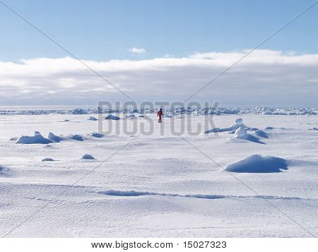 A man walking lonely in the ice desert of Antarctica