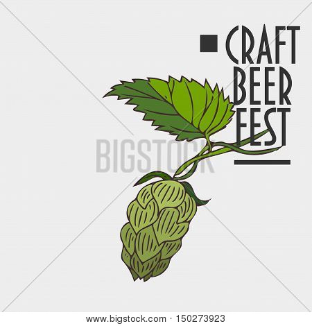 Hops plant sign. Green Hops Cone and leaves. Text