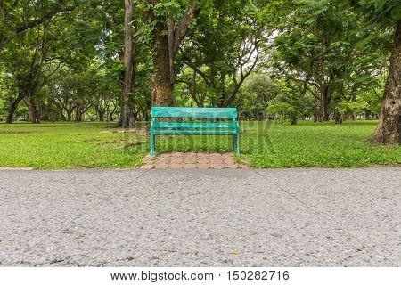 Wooden park green bench under trees .