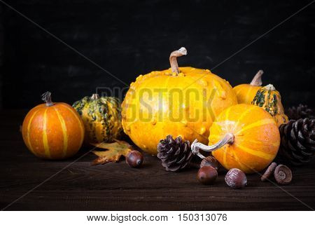 Festive autumn background. Pumpkins pine cones and leaves at dark wooden table.