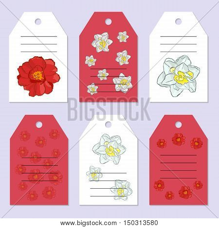 Set of gift tags. Stock vector set. Hand drawing tulip and narcissus. Place for an inscription. You can place your text in the center. Greeting invitation design cards.