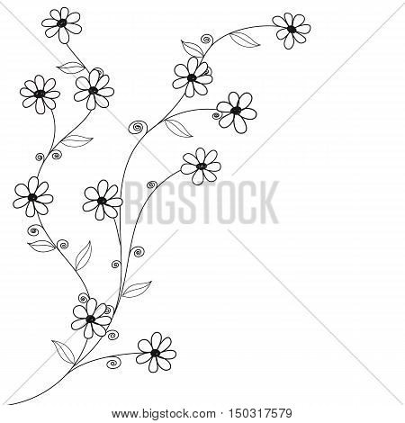 black and white doodle flowers hand drawn vector