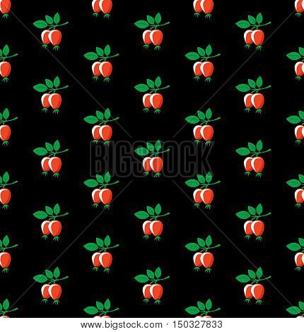 Rosehip seamless pattern. Briar symbols on black background.