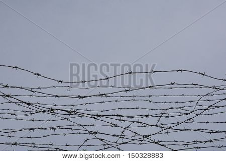 Fencing. Fence With Barbed Wire. Let. Jail. Thorns. Block. A Prisoner.   Under Tension. Holocaust. C