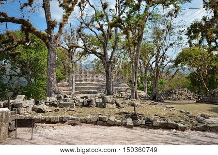Structures of East court at Copan archaeological site of Maya civilization in Honduras