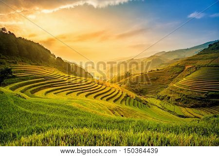 Beautiful Sunset on terraced rice field in harvest season in Mu Cang Chai Vietnam