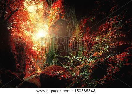 Surreal colors of fantasy landscape at mystical tropical mossy forest with amazing jungle plants. Concept for mysterious nature and fairy tale background