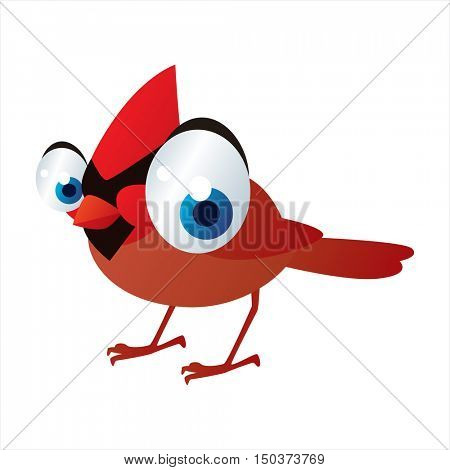 vector cute isolated animal character illustration. Bird. Funny Cardinal