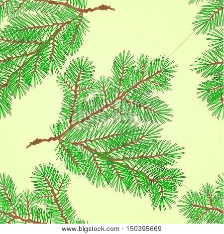 Seamless texture Conifer Spruce branch nature green background vector illustration