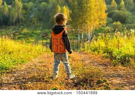 The boy standing on the road at the edge of the forest sunny autumn day Yellow leaves underfoot.