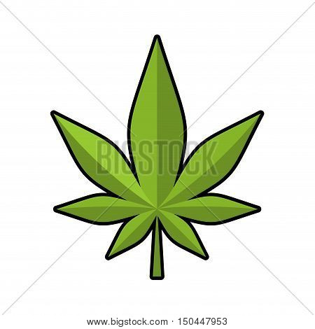 Leaf Marijuana. Green Cannabis. Leaflet Ganja. Narcotic Plants