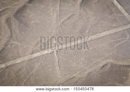 World famous Nazca lines from the Nazca overflight