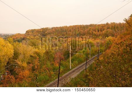 Top View Of  Railway Track In A Beautiful Autumn Forest Fog. Dampness, Bright Warm Autumn Colors.