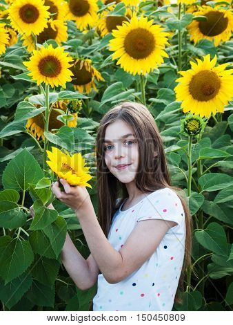 Beautiful girl on the field of sunflowers