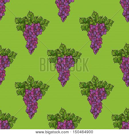 Set of bright grape and leaf on green background. Thanksgiving day. Harvest time. Boundless background for your design.